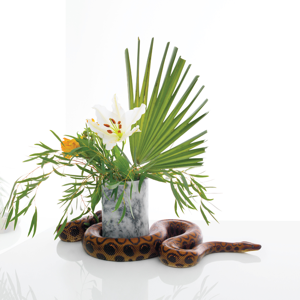 Image d'un serpent autour d'un pot de fleur